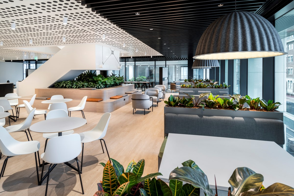 SAS acoustic and suspended ceilings - john akinson interiors and acoustics